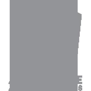 adrenaline-amusements.png